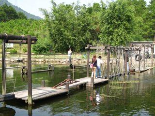 <清远-古龙峡全程漂-牛鱼嘴玻璃桥-银盏森林温泉2日游>山地越野车、自助野炊、野战