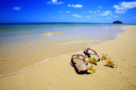 [五一]<美国东西海岸-夏威夷-加拿大-墨西哥17-18日游>联运减1000/自由女神游船/千岛群岛/大瀑布/66号公路