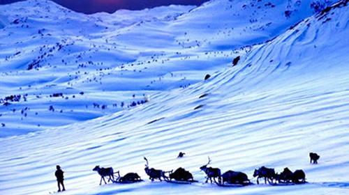 雪景如诗如画冰雪,沉淀记忆,拍照留念等;乘车进入雪乡森林公园后,海浪