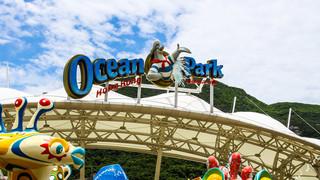 海洋公园2日游_去港澳旅游包团_港澳旅游参团_港澳旅游要带多少钱