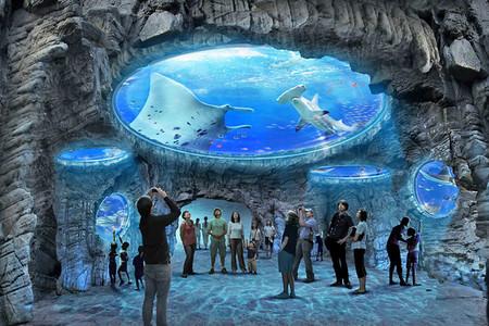<香港天际100+海洋公园半自助1日游>360度鸟瞰香港迷人的景色,带您乐游海洋公园