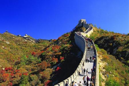 <北京八达岭长城-野生动物园1日游>亲近自然之旅