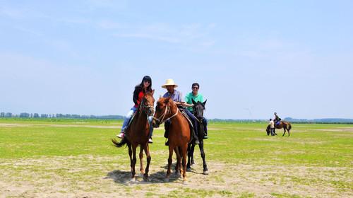 费骑马驰骋草原图片
