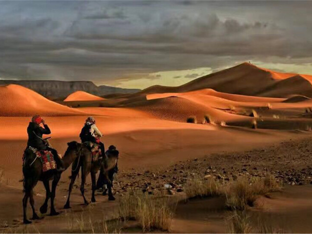 前往撒哈拉的图片