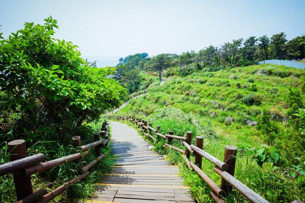济州岛3月天气怎么样_济州岛穿衣指南_济州岛