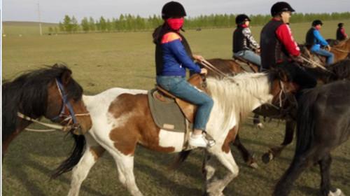 蒙古部落-黑山头马场图片