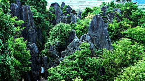 鳞隐石林图片