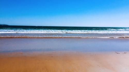 沙滩3中文版_ 青岛极地海洋世界-熊牧场-黄岛金沙滩3日游>含海上游船观光 1晚精品