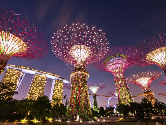 【当地玩乐】<新加坡市区-滨海湾花园-名胜世界S.E.A海洋水族馆1日游>2人起订拼车接送