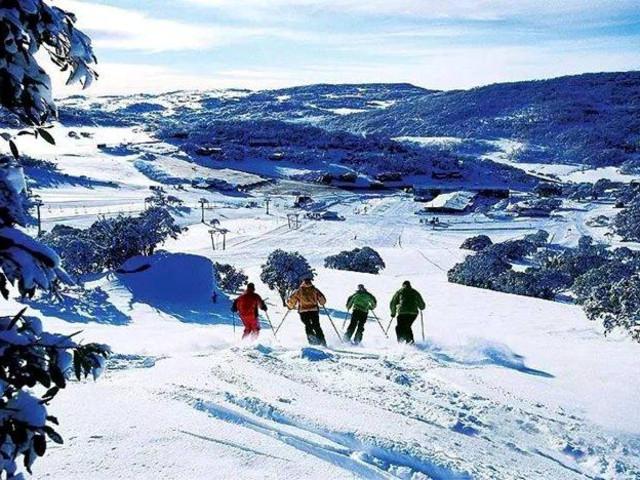 <悉尼休闲滑雪三天两晚中文团>