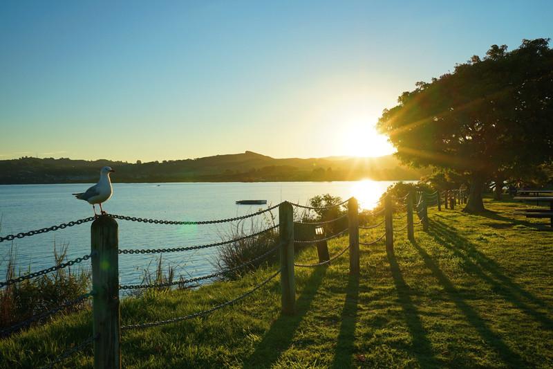 #我的a攻略假期#新西兰攻略岛17天自驾游~带你西陆南北纵横图片
