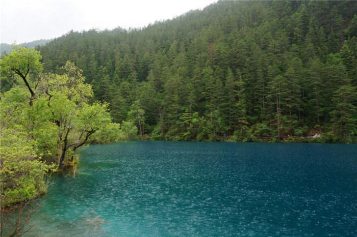 """""""老虎海""""有一条横向的栈道,可以欣赏到水边的转经筒,以及水中的灌木丛"""