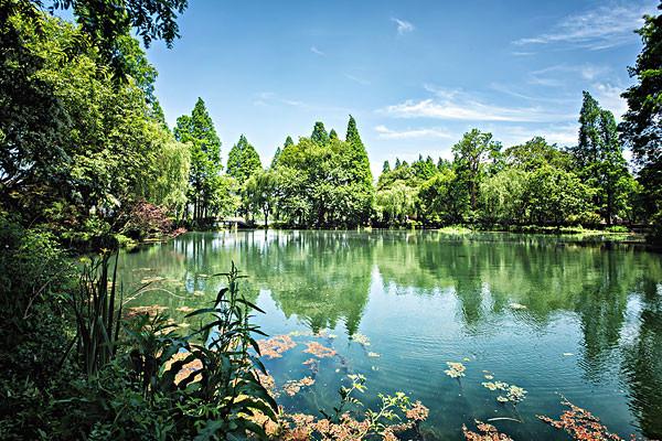 驾车线路: 杭州动物园 向正北方向出发,行驶60米,右转进入虎跑路 右转