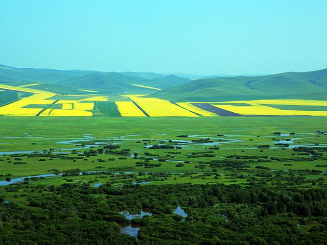 呼伦贝尔大草原-额尔古纳河右岸-大兴安岭原始森林7日游>徒步图片
