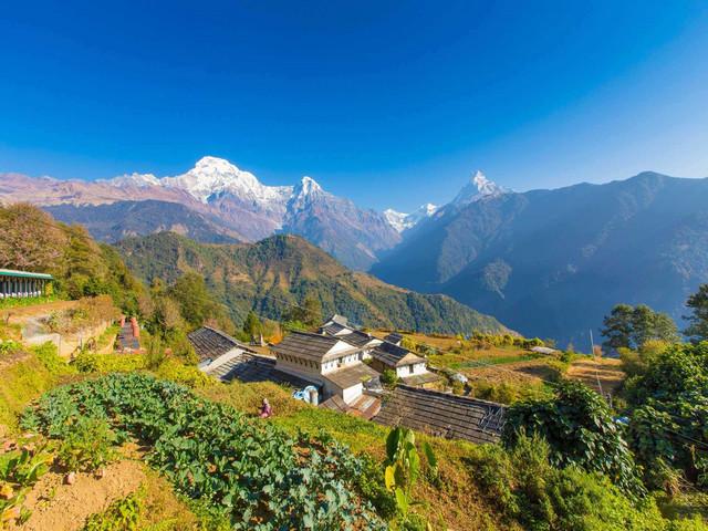 <尼泊尔加德满都-奇特旺-博卡拉-丹普斯8日游>2人起独立成团 天天出发 丹普斯轻徒步 2人一挑夫 博卡拉全天自由活动 骑大象穿越原始丛林