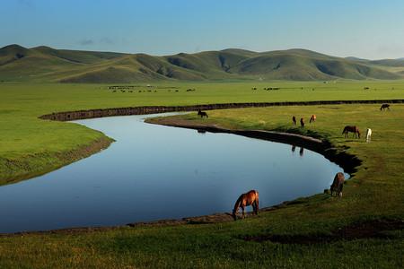 <希拉穆仁草原-库布齐沙漠2日游>免费酒店接、舌尖上的内蒙古、全新旅程,新视觉