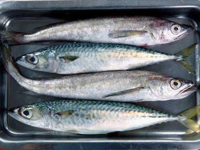 瓦埠湖银鱼家乐福红牌楼美食图片