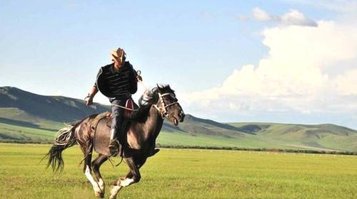 可以接受蒙古族接待贵宾的最高仪式图片