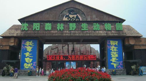 沈阳森林动物园自驾1日游>导游办票