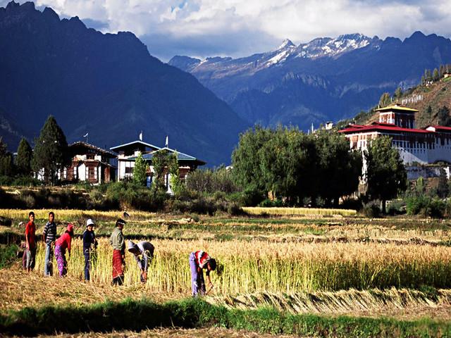 不丹机票 当地9晚10日游>2人成团 含乌玛酒店下午茶