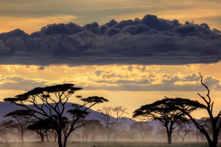 <坦桑尼亞-肯尼亞-贊比亞-博茨瓦納-津巴布韋-埃塞俄比亞20日游>A線兩晚塞倫蓋蒂、察沃、桑給巴爾島/B線2晚馬賽馬拉、阿伯岱爾、原始部落