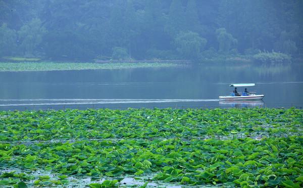 九月去洪湖旅游必备物品_九月去洪湖旅游景点推荐_九月去洪湖旅游购物