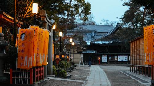 奈良神鹿公园的#旅图换旅费# #情人节摄影展#