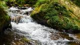 金鞭溪大峡谷的#旅图换旅费# #自然风光#