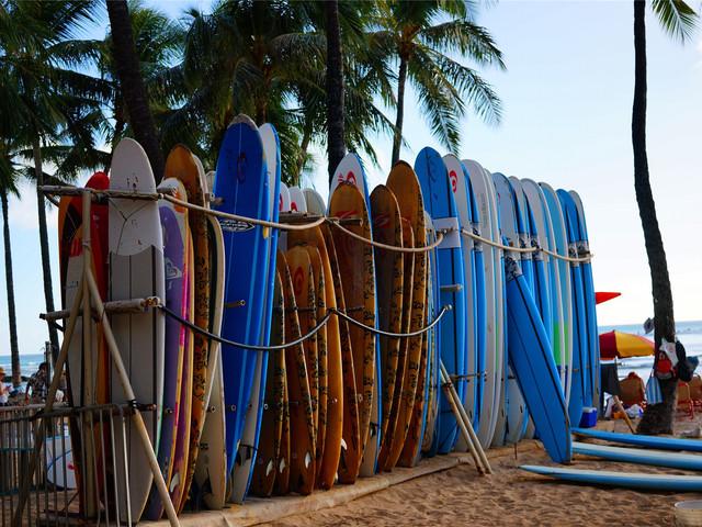 夏威夷檀香山小环岛东海岸精选(威基基海滩 钻石头山 恐龙湾 喷泉口 大风口)半日游
