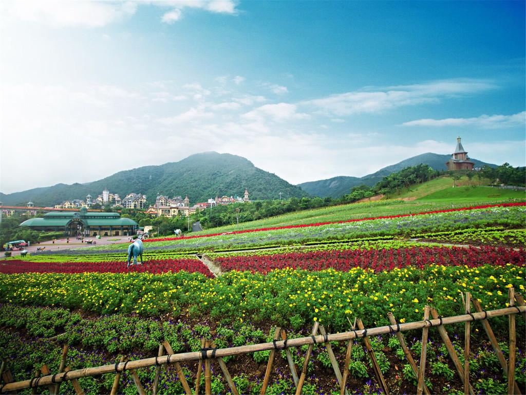 小火车及索道缆车免费 生态冒险主题乐园——大峡谷,位于东部华侨城的图片