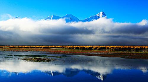 及日-大峡谷-桃花村-羊湖-卡若拉冰川-日喀则8日游>雪域桃花,醉美春天