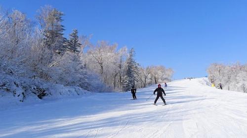 伊春青少年滑雪基地