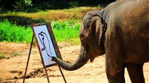 原始动物大象手绘图