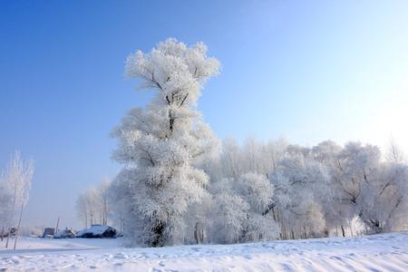 <雪乡-吉林雾凇岛3日游>哈尔滨起 吉林止,玩转雪乡全景  雪地摩托登山 冰雪画廊穿越 梦幻家园 二人转  雾凇岛