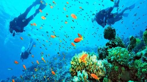 [别墅]泰国普吉岛5晚7日游无国庆,1晚海边五星自费海边小型图片
