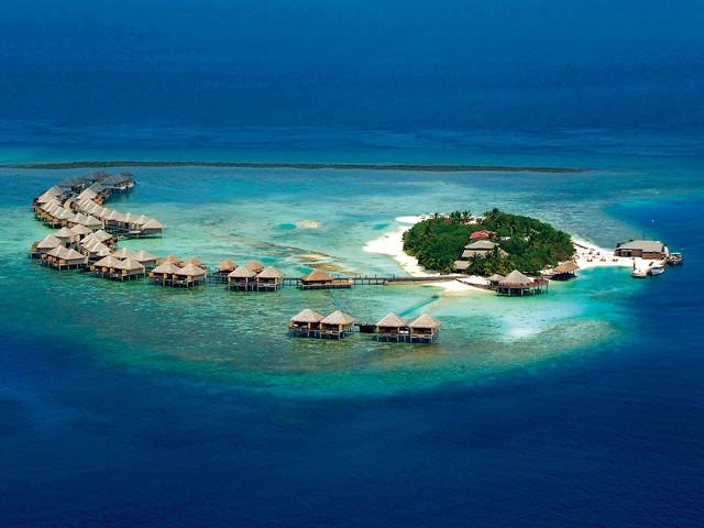 <马尔代夫瓦度岛Vadoo4晚单酒店>潜水圣地,全水屋,快艇上岛