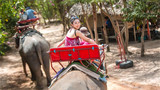 骑大象.jpeg