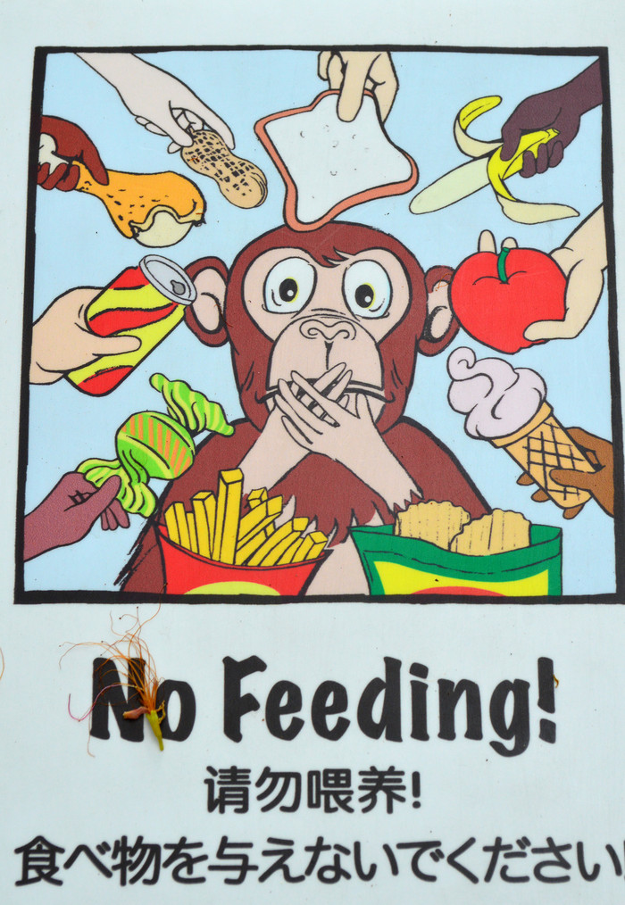 这个区域好大 还看到有禁止喂食的标志,实际根本没有人喂食给动物的