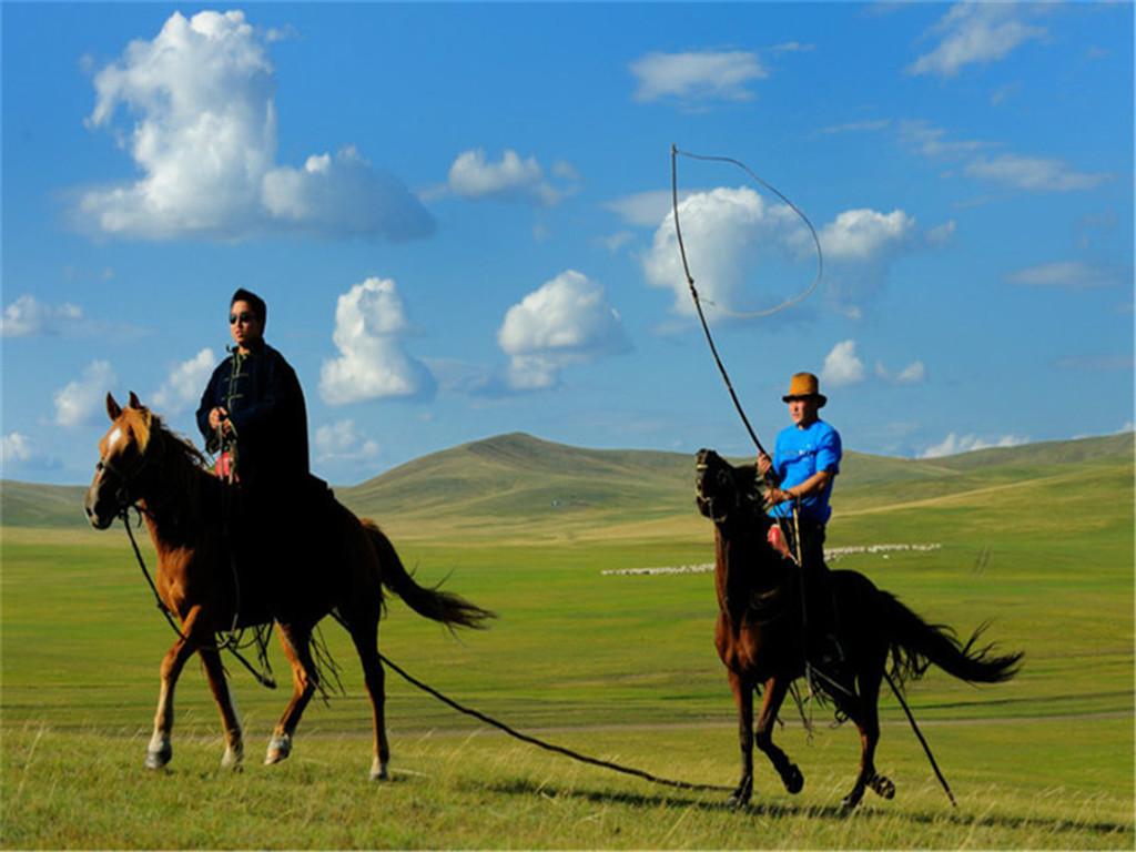 一起大碗喝酒大块吃肉,在草原上骑马放纵,去牧民家做客,献哈达,下马酒