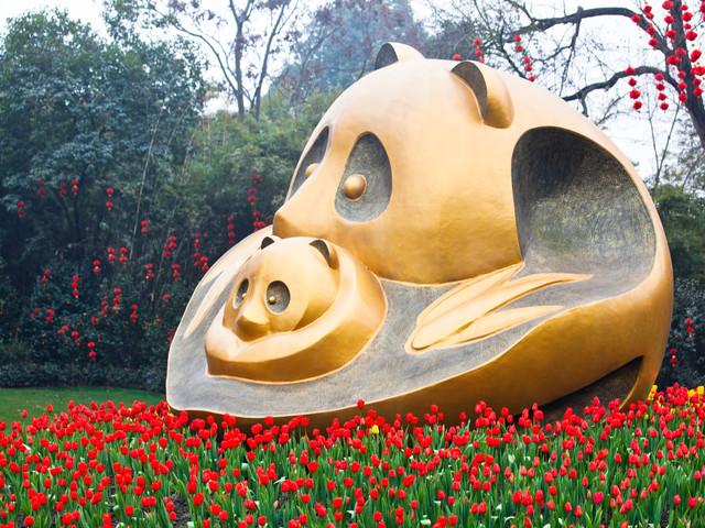 <成都熊猫基地+都江堰+川菜文化体验馆1日游>纯玩无购物+特色餐标+天天发团+成都三环路内接