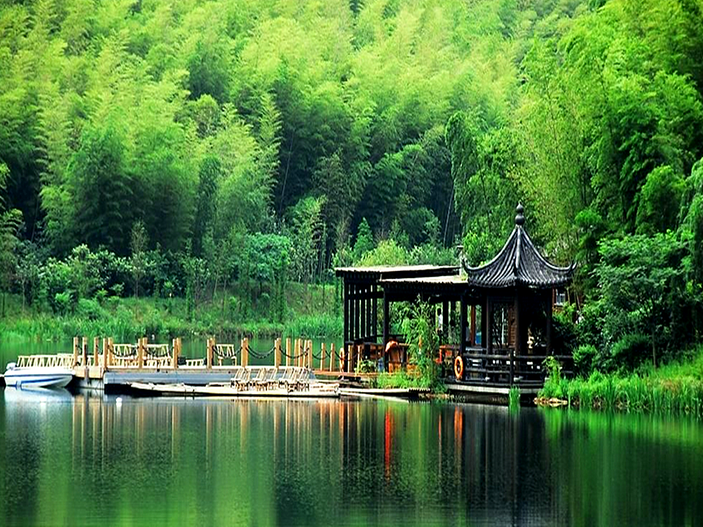 色彩风景俯视竹子
