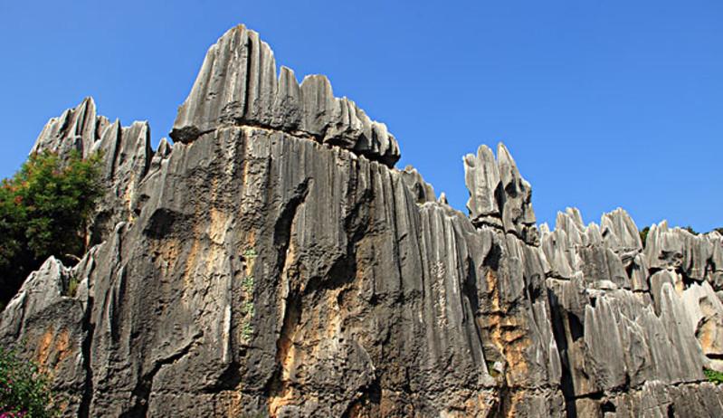 天津元古奇石林图片
