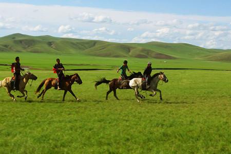 <希拉穆仁草原1日游>含下马酒仪式,来到草原做草原的巴特尔