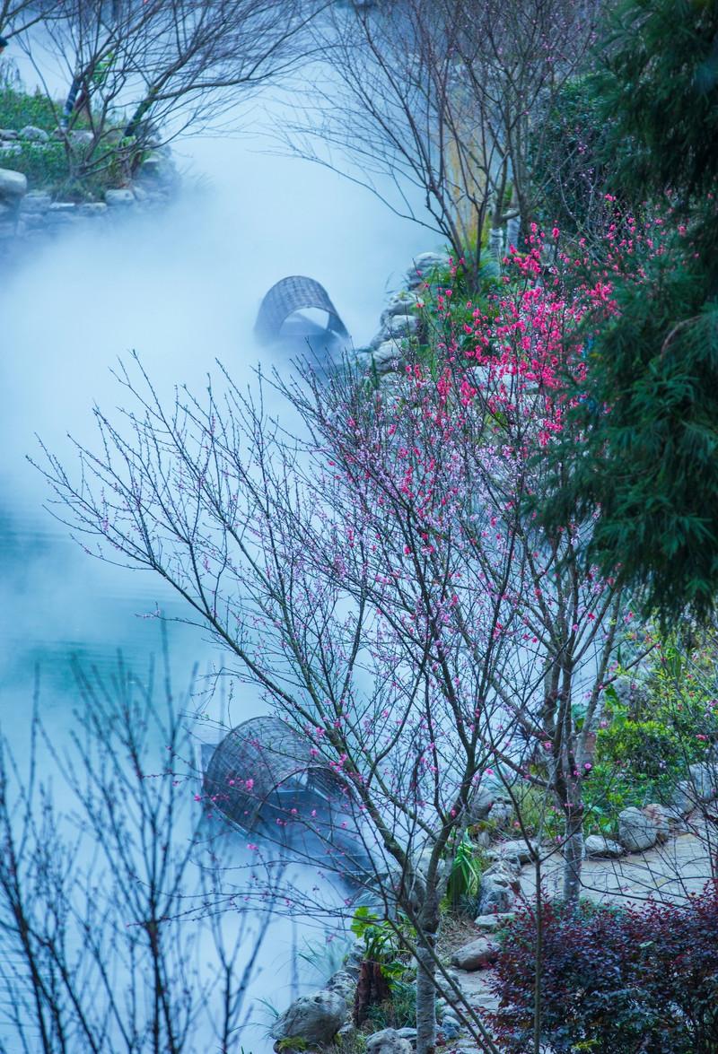 酉阳现实版《桃花源记》 给你向往的山水田园生活