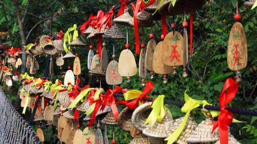 551_三亚_呀诺达雨林文化旅游区