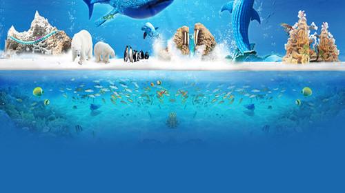 广州长隆野生动物园-珠海长隆海洋王国双飞半自助4日游>2晚长隆酒店