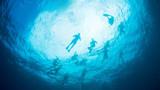 710_长滩岛_长滩岛潜水