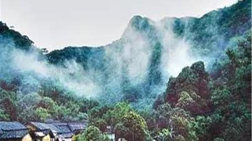 王子山森林公园门票_[端午] 瓜果亲子游-广州王子山森林公园2日游>宿竹海林园,原始森林