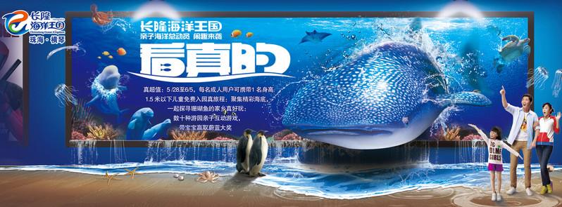 19父亲节及周末海洋王国均举办多种亲子游戏,让游客在游玩途中增进
