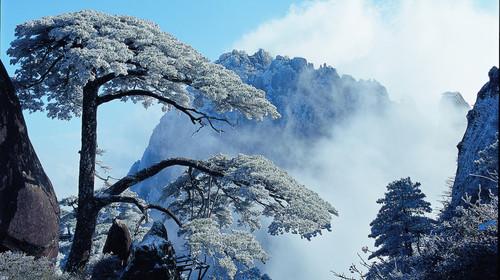 黄山风景区猴年套餐